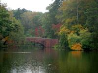 Bass Pond in the fall, Biltmore Estate, NC