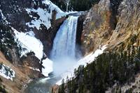 Lower Falls of the Yellowstone River