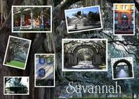 Savannah Collage by Carol Groenen