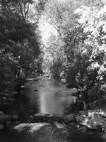 Boulder Creek in Black and White #6