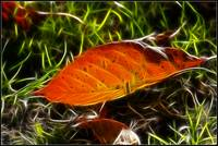 Autumn fractalius - I can't miss out