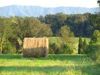 mountain haybale