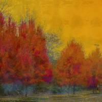 Red Trees Orange Sky by Faye Cummings