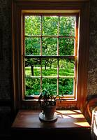 Colonial Cottage Window