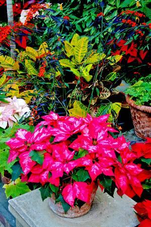 11-12-2010B by Walter Paul Bebirian
