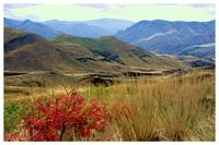 Hells Canyon Autumn