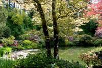 Victorian Garden Pond by Carol Groenen