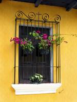 Window at Old Antigua, Guatemala