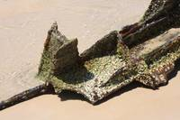 Nap2087 Wreck of the Maheno Fraser Island
