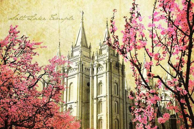 Salt Lake Temple )pink blossoms(