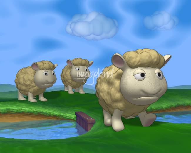 Seamour Sheep