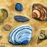 shells Art Prints & Posters by Rebecca Coleman