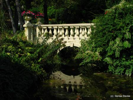 Halifax Public Gardens_2181