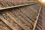 """Down the Tracks into Gold by James """"BO"""" Insogna"""