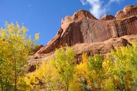 Poison Spider Mesa in the Fall (Autumn)