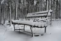 The Snow Covered Bench