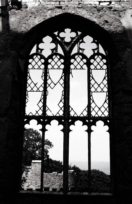 Gothic Windows By Jane Moss