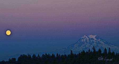 Rainier Moonrise by Kate Lynch