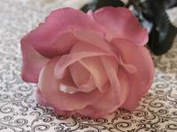 pink rose on scroll paper