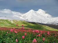 Mountains of the Caucasus.