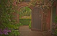 Filoli Garden Gate and Flowers