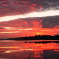 Red Sunrise In Florida by Barbara Wilford Gentry