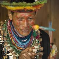 Amazon Shaman II by Betty Sederquist