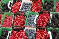 Fresh Berries, Parisian Street Market