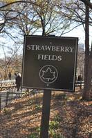 Strawberry Field 10 Central Park
