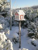 Frozen Bird House by Ozborne Whilliamsson