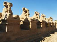 Ram headed sphinxes at the entrance to Karnak