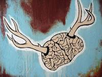 Use Your Brain Deer!