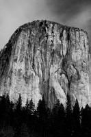 The Grandeur of El Capitan