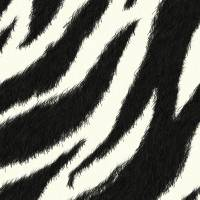 Zebra effect Art Prints & Posters by Sheara