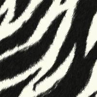 Zebra effect Art Prints & Posters by Sheara