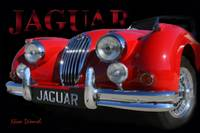 Jaguar Red