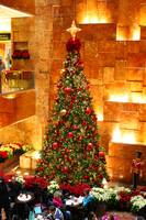Trump Tower Christmas Tree