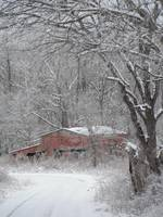Prices Branch Barn in Winter