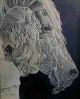 Horse & Girl Portrait