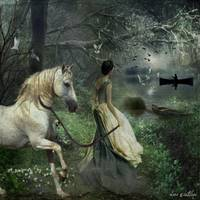 the lady and her horse