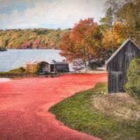 """""""Cranberry Bog Farm"""" by ginacormier"""