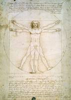 Proportions of the Human Figure, Leonardo da Vinci
