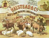 Halstead Beef & Pork Packers Vintage Advertisement