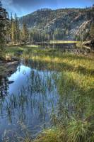 Outlet Creek, Woods Lake, Sierra Nevadas