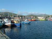 Ireland, Dingle Harbor