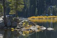 Autumn Colors, Woods Lake, Sierra Nevadas