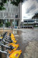 Riparian Plaza During 2011 Floods