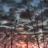 January Sky at Sunset by Jim Crotty by Jim Crotty