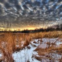 Deep Winter on Ohio Landscape by Jim Crotty