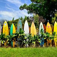 """Maui Surfboard Fence"" by RobDeCamp"